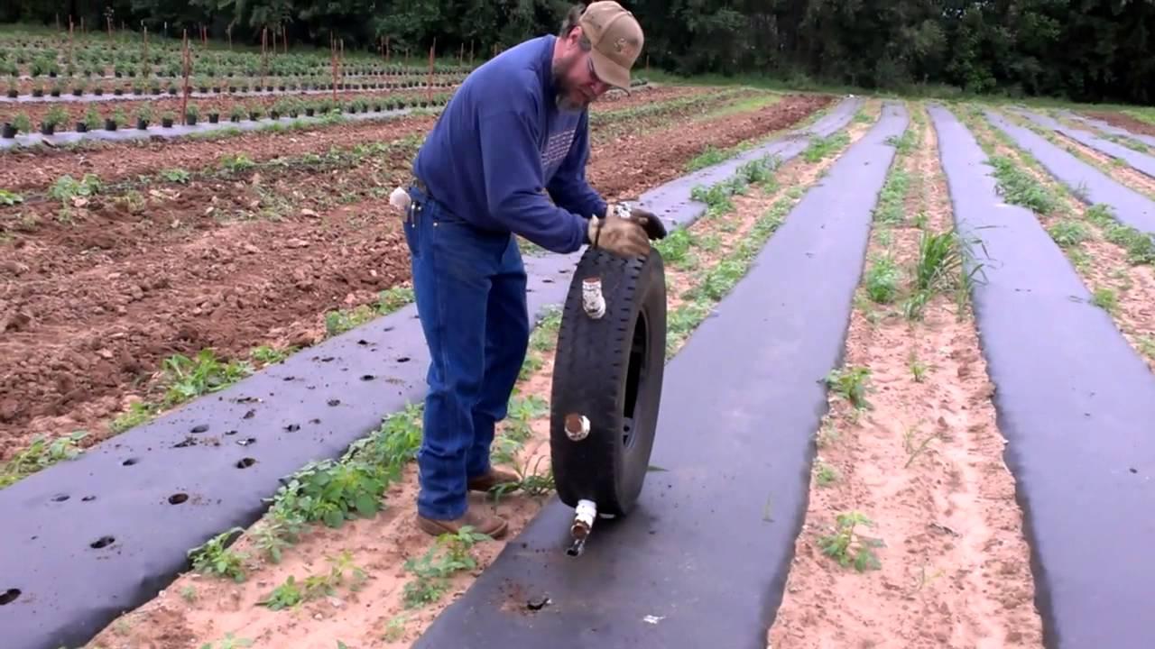 sử dụng màng pe nông nghiệp