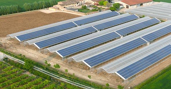 Mô hình nhà kính kết hợp lợp mái điện năng lượng mặt trời