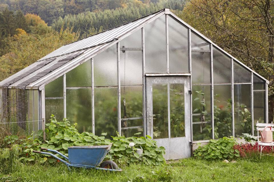 mô hình nhà kính trồng hoa lan ở đà lạt