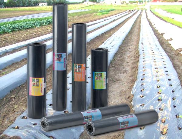 Màng phủ nông nghiệp PE đen cuộn 15MIC 1m x 400m